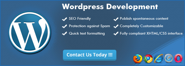 Best Wordpress Development Company in India