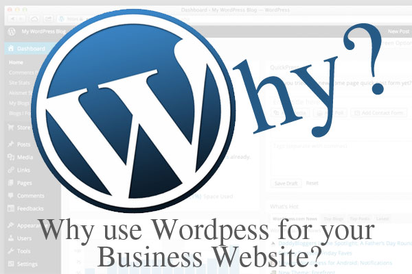 How You Can Use WordPress For Your Business