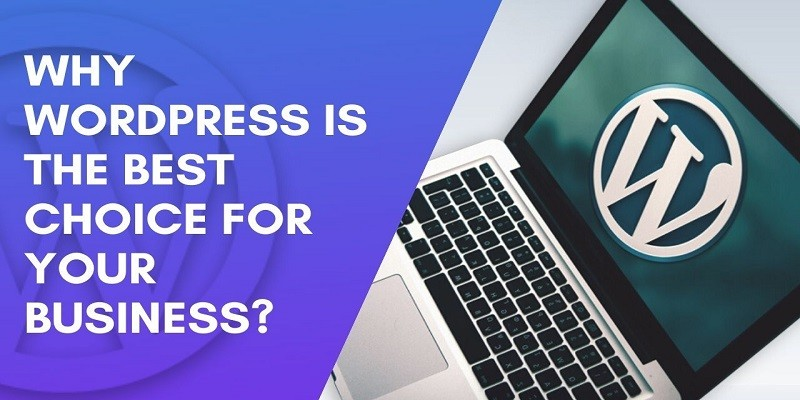 Why WordPress Is the Best Fit for Your Business